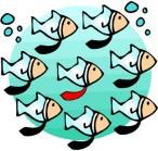 fish-jpg